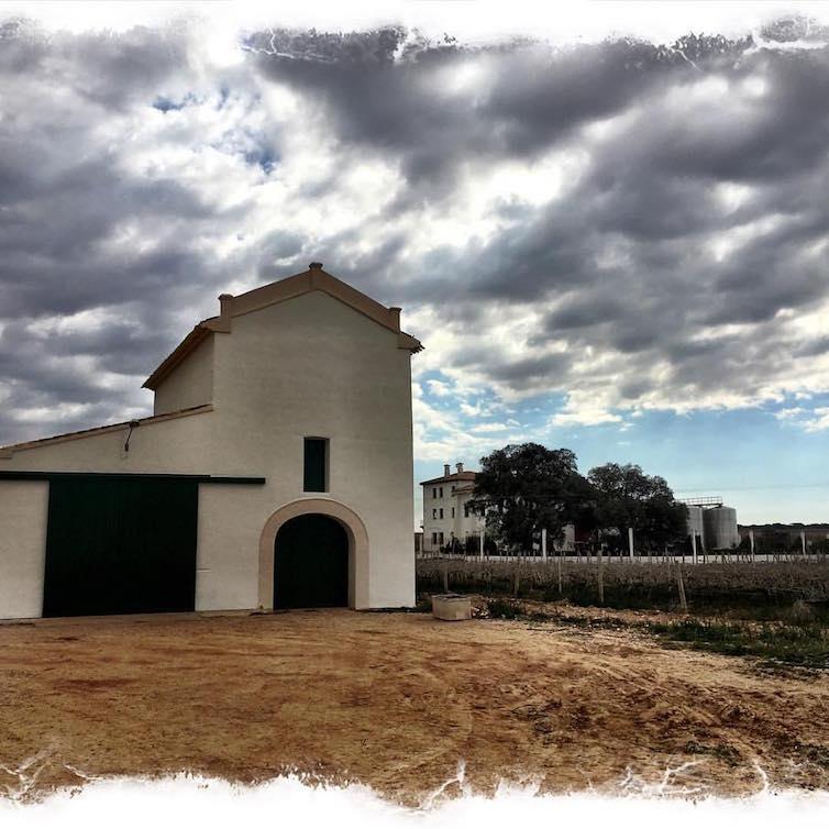 Palomar-Bodegas-Illana